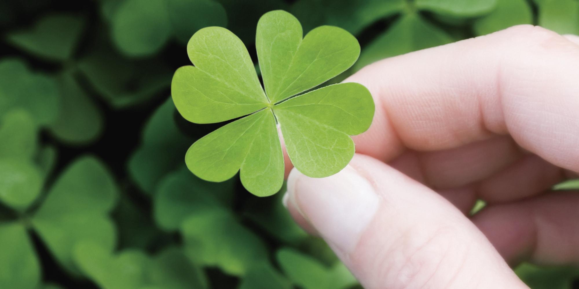 Lucky Day Meest Getrokken Getallen